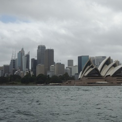 From Taronga